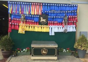 rsz_2015-bf-win-ribbons-show