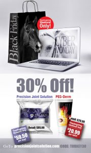 black-friday-ad-web